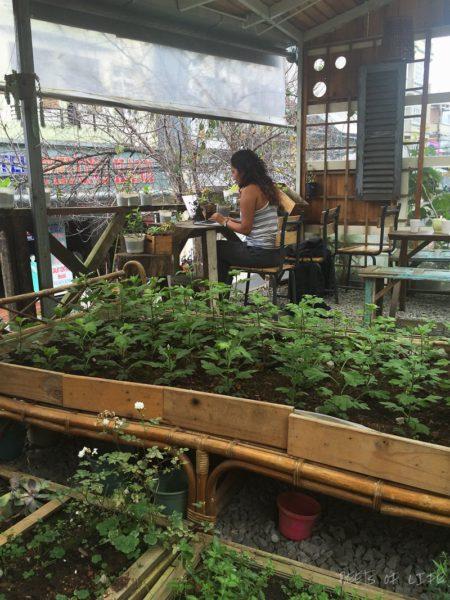 An Cafe: serving some Vietnamese Vegetarian Food