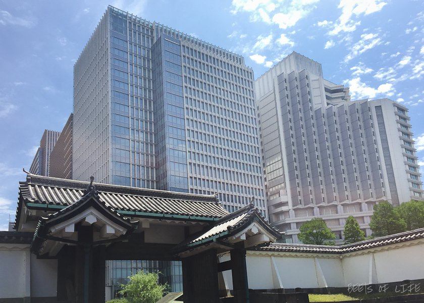 View from the Imperial Palace gate