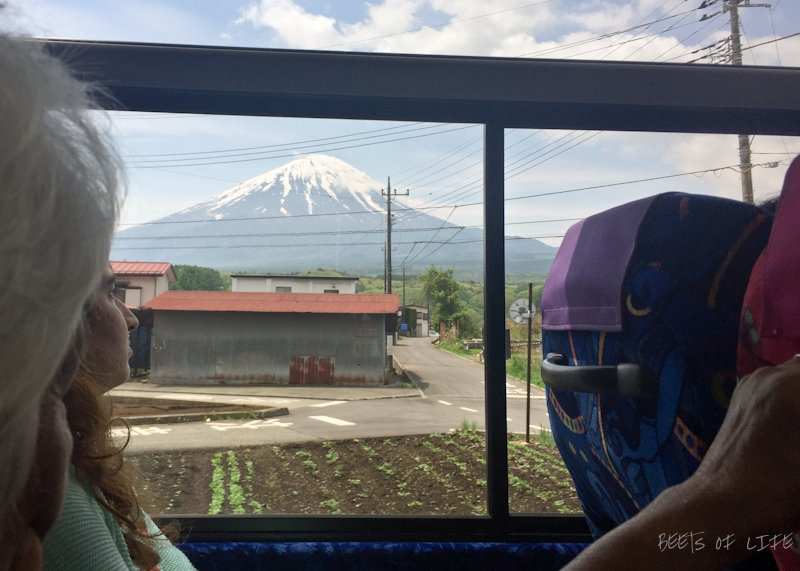 First sightings of Mt Fuji from the bus