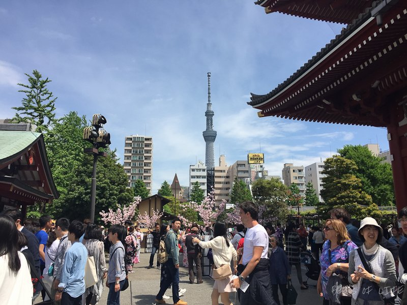 Skytree viewed from Sensoji temple
