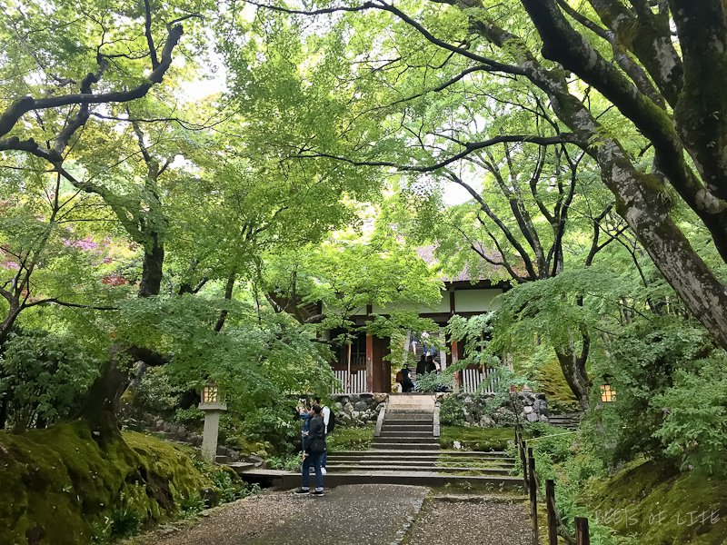 Temples and shrine to visit in Kyoto: Yup, THAT is the entrance.
