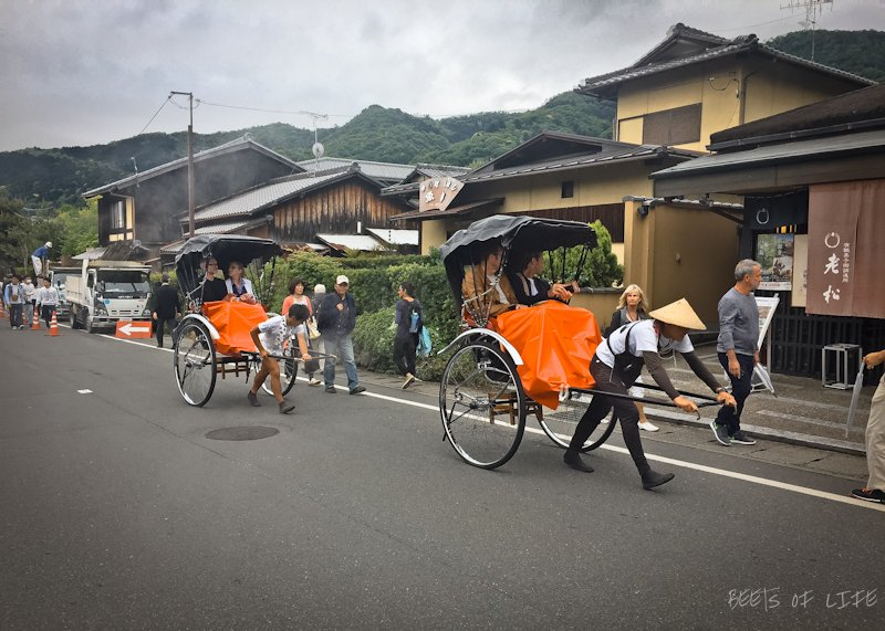 There are hand pulled rickshaws in Arashiyama that people seems to enjoy. However, we are not sure if we like the idea of being pulled by another human when we have 2 legs of our own.
